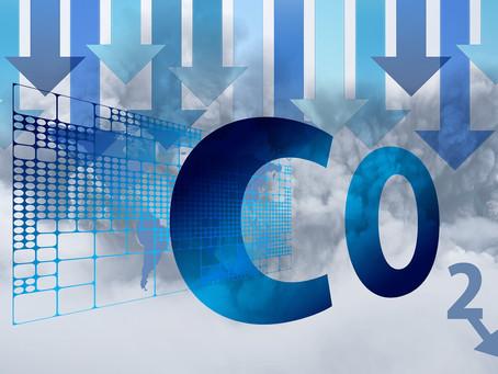 Em artigo publicado no Relatório da GO Associados, Ricardo Assumpção fala sobre o mercado de carbono