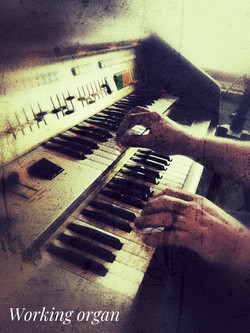Working Organ