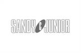 SANDY JUNIOR.png