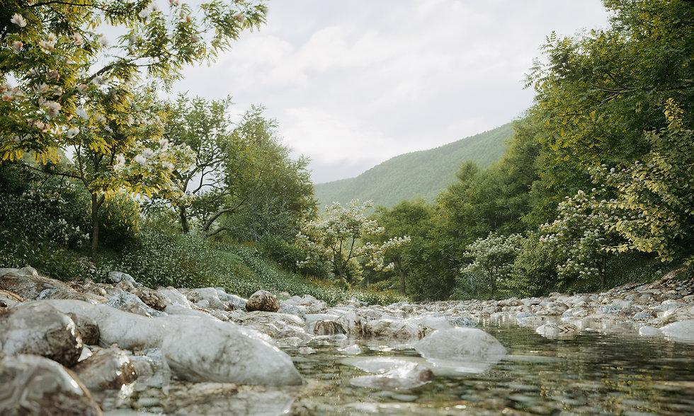 Georgia_View110000.jpg