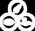 Logo_Missão_Visão_e_Valores.png