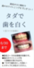 名称未設定のコピー (3).jpg