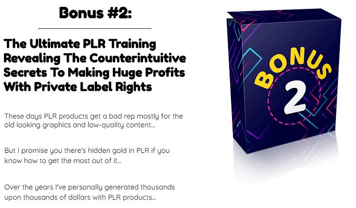 Premium PLR Reports Bonus 2.PNG