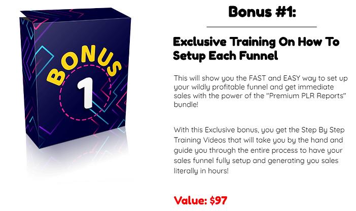 Premium PLR Reports Bonus 1.PNG