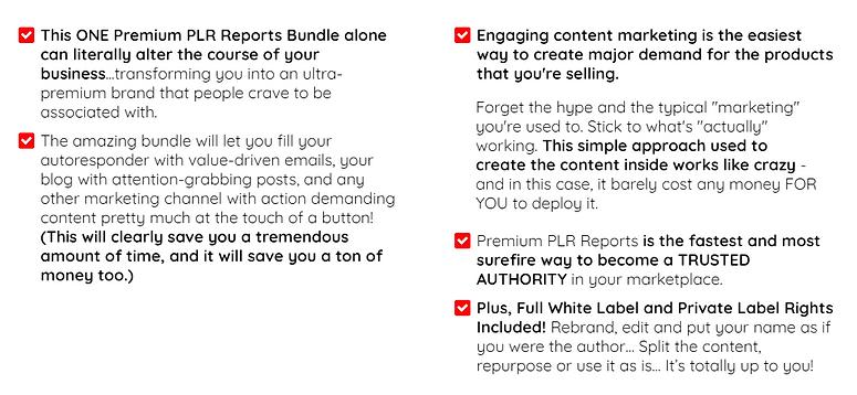 Premium PLR Reports 1.PNG