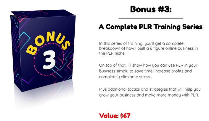 Premium PLR Reports Bonus 3.PNG