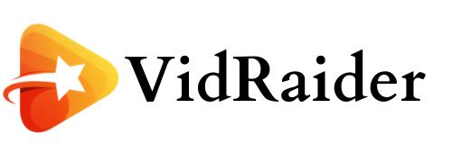 VIDRAIDER Logo.png