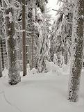 Śnieżnik2019.jpg