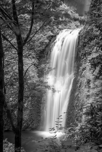 Lower Multnomah Falls - Oregon