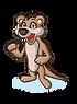 click_meerkat_2-new.png