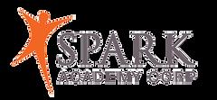 SPARK-Logo_gray_300dpi_print.png