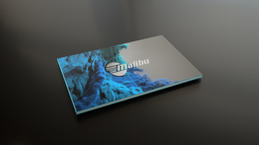 Malibu Book Cover_02.jpg