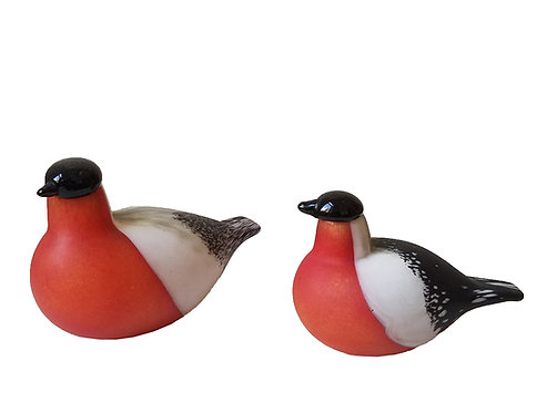 hand blown glass red finch by toika