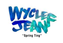 Wyclef Jean Spring Ting
