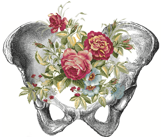 Pelvis+and+Flowers.png