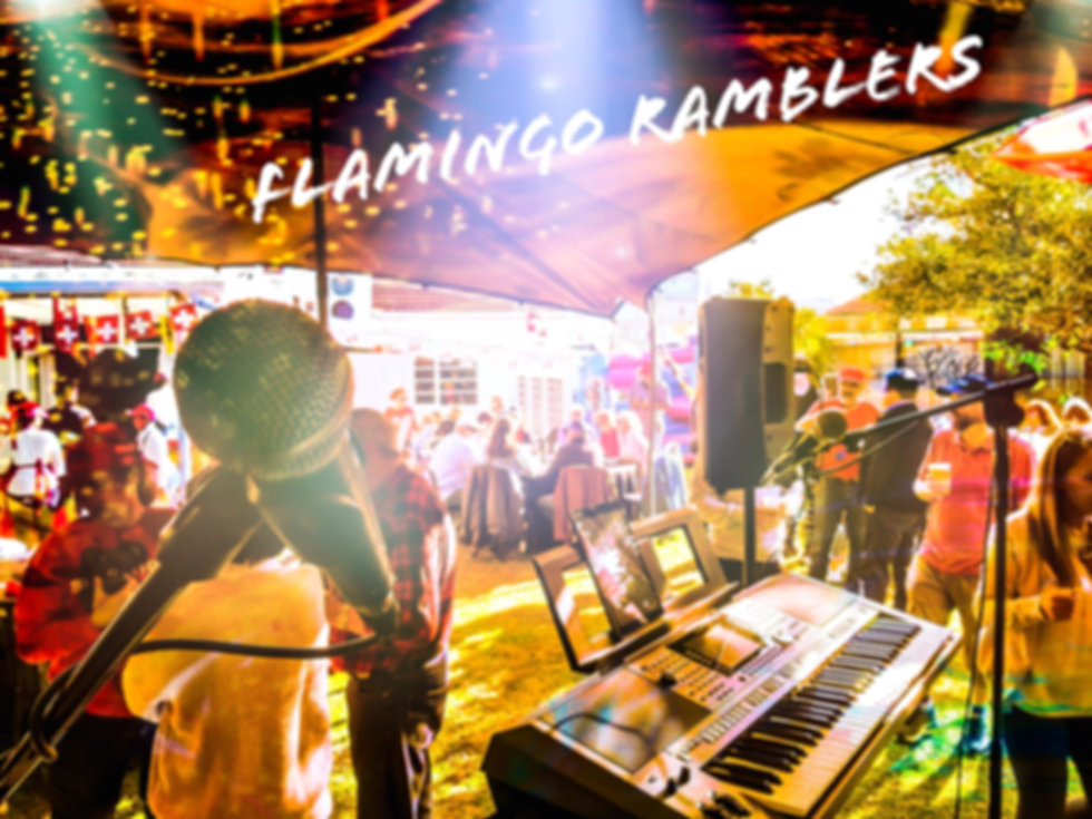 Flamingo Ramblers Swiss Function.JPG