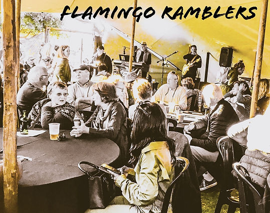 flamingo ramblers wildried timothy swiss