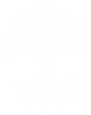 pngkey.com-white-tree-png-518984.png
