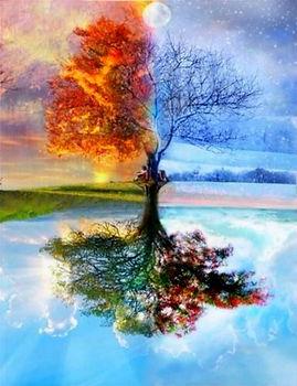 Tree%20of%20Life_edited.jpg