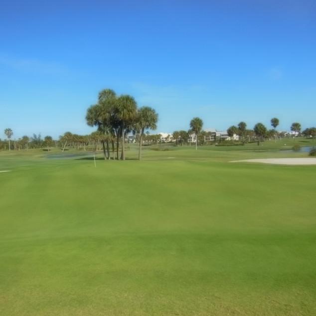 Stuart Golfing.JPG