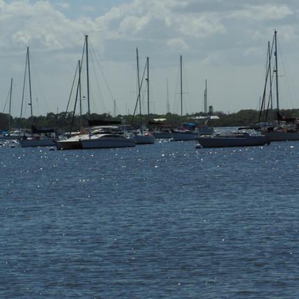 Sailboats in Stuart.JPG