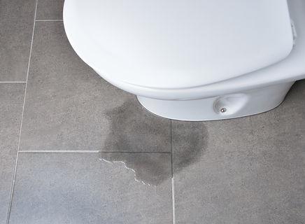 leaky toilet.jpg