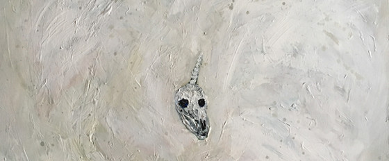 Unicorn Skull in White Void