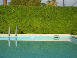 Palm Springs Pool