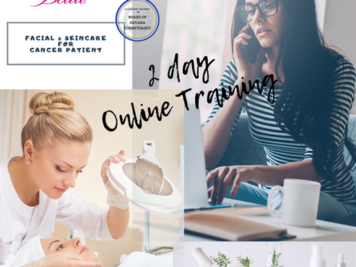 2 Day Online Training