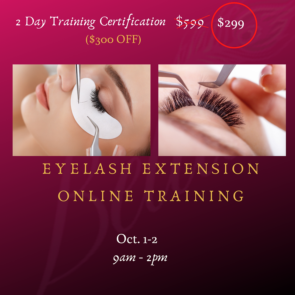 Come as a beginner to learn how to put Eyelash Extensions on clients.