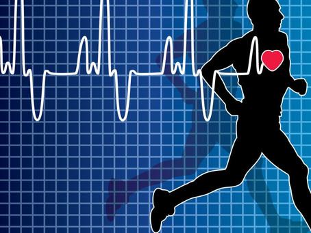 A importancia da frequência cardíaca