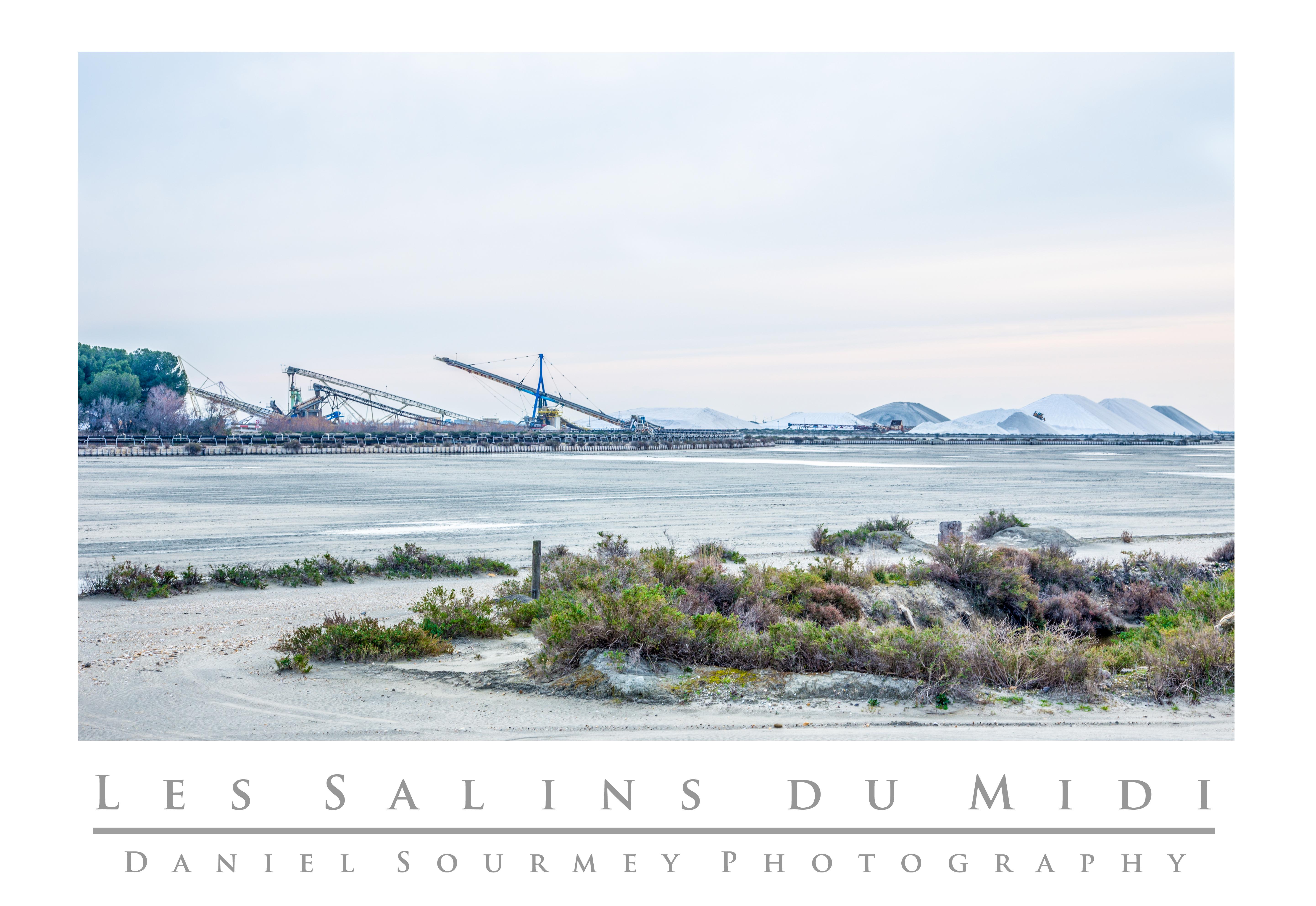 Les salins du Midi