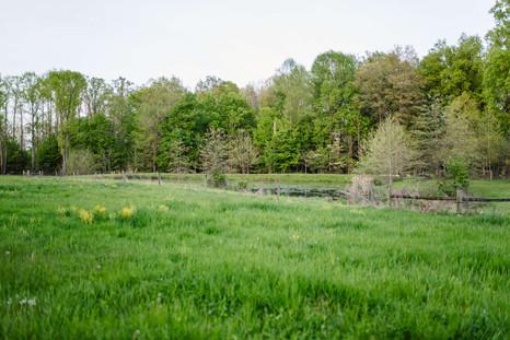 life-sanctuaries-latham-farms-life-sanct