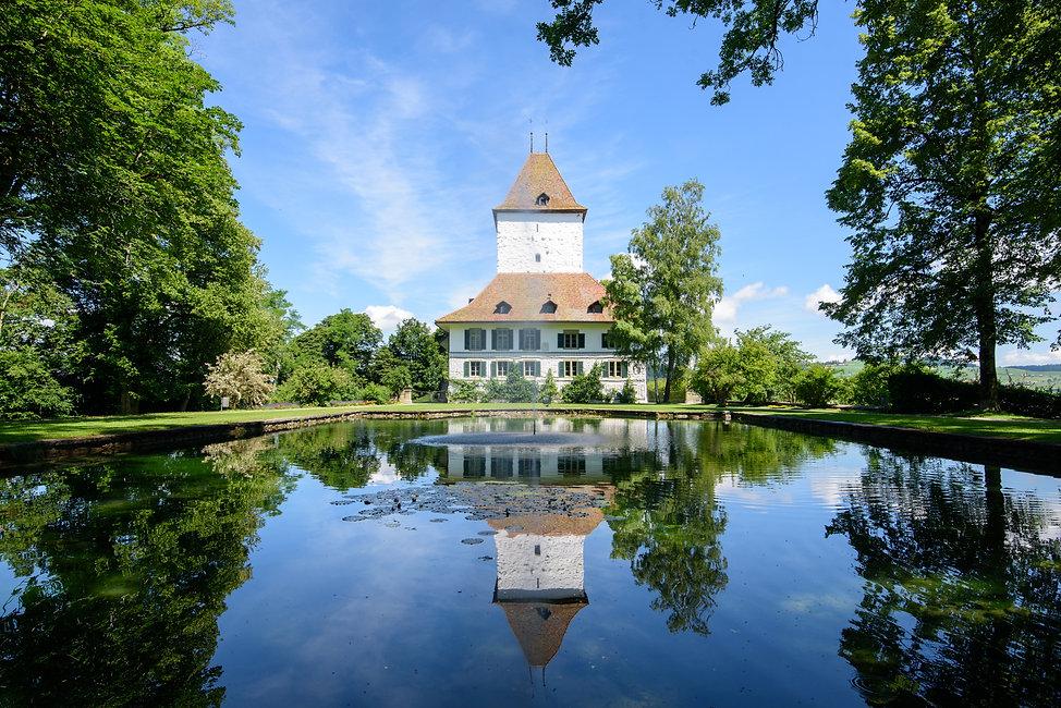 Schloss & Teich 1.jpg