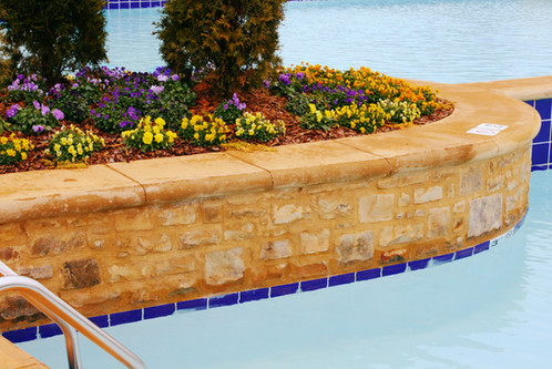 Natural Stone Pool Trim