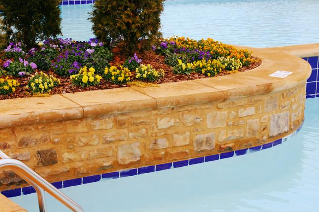 Natural Stone Pool Trim