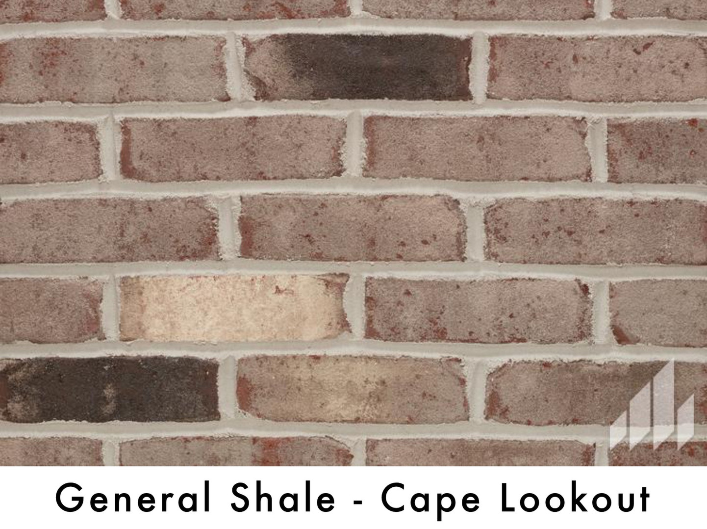 General Shale - Cape Lookout