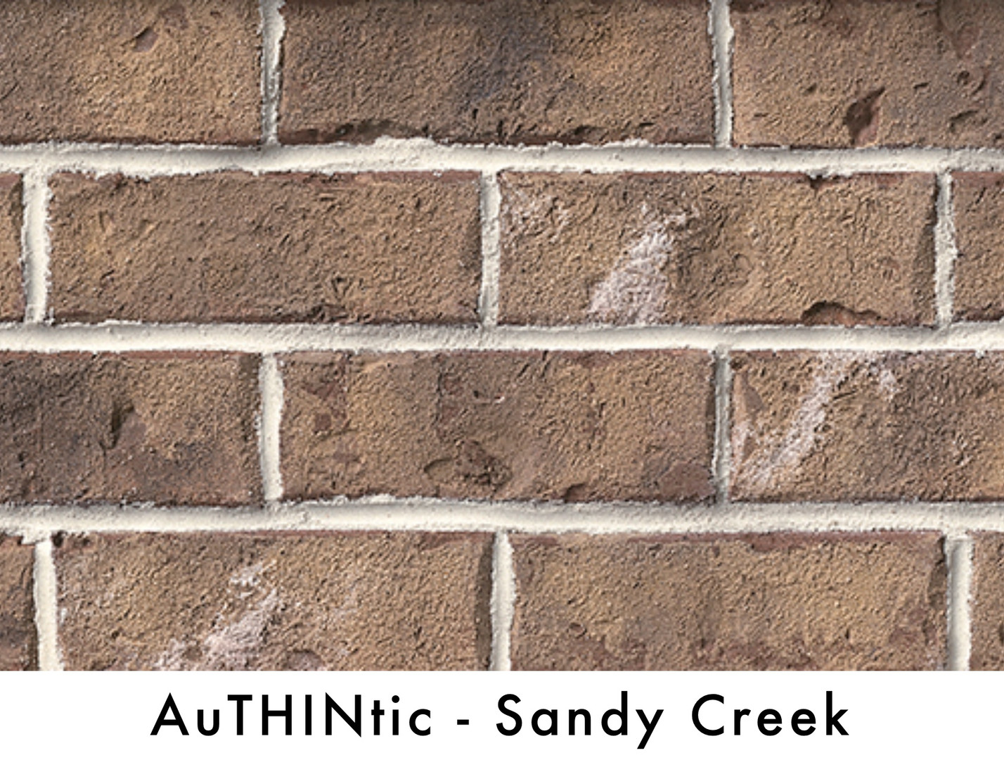 AuthinticsSandyCreek.jpg