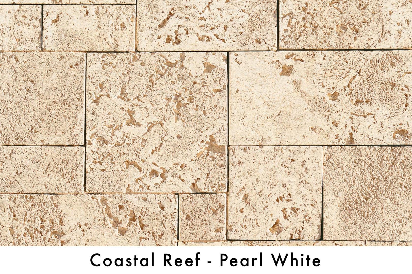 Coastal Reef - PearlWhite