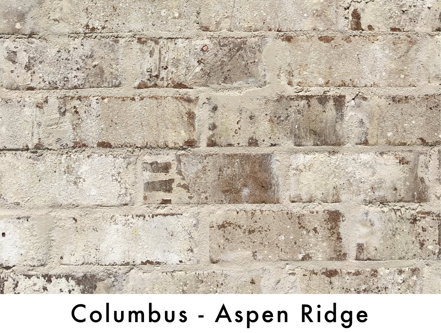 ColumbusAspenRidge.jpg