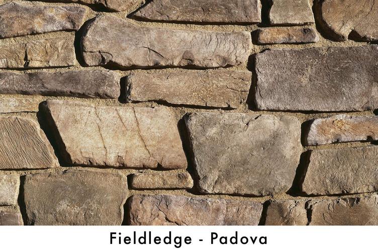 Fieldledge - Padova