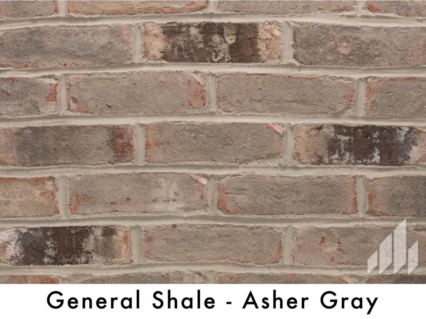 General Shale - Asher Gray