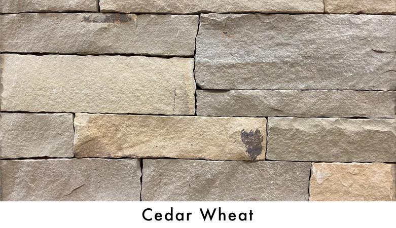Cedar Wheat