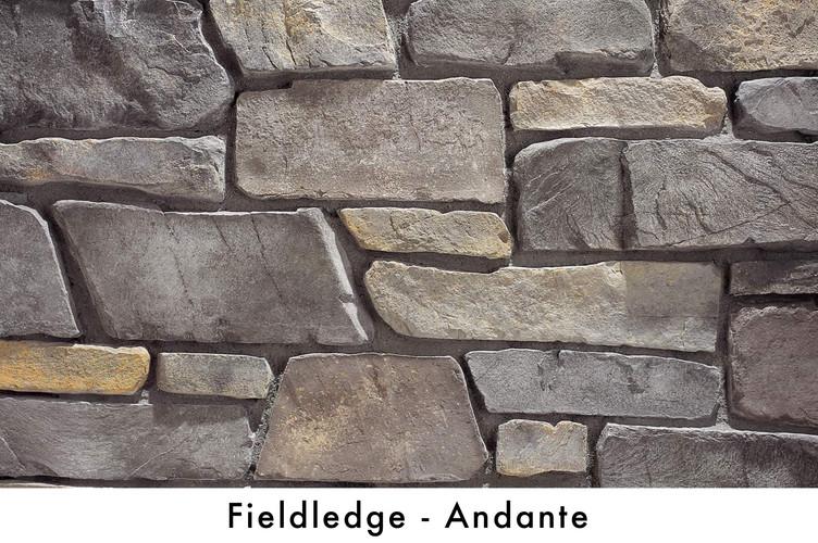 Fieldledge - Andante