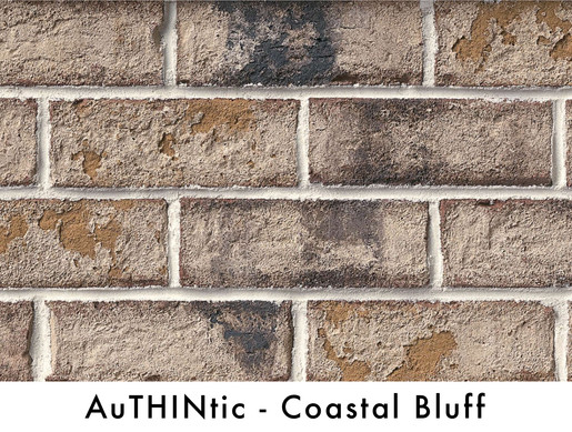 Authintic Brick - Coastal Bluff