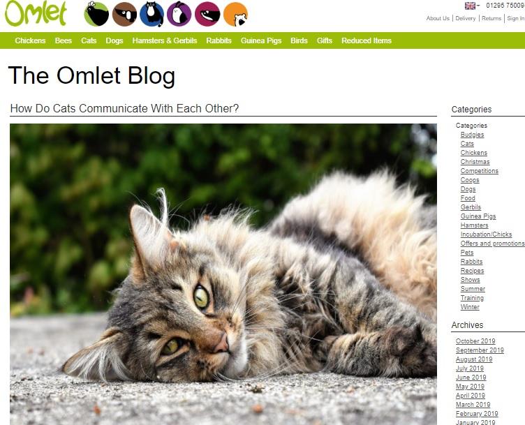 The Omlet Blog