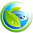 Nature's green Magic circle logo 312 bit
