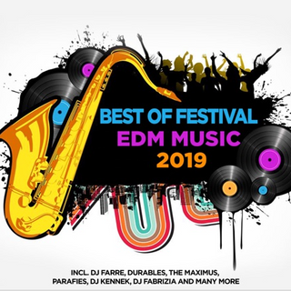 BEST OF FESTIVAL EDM MUSIC 2019