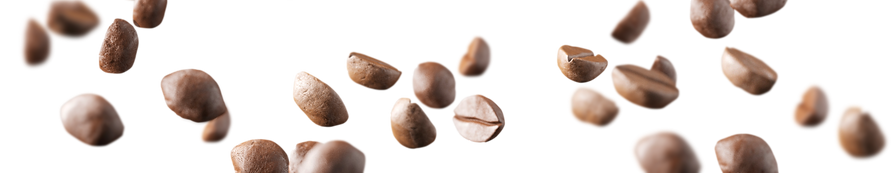 Coffee Beans_edited.png