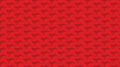 donkey-texture.png